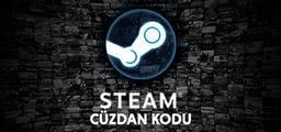 Steam Cüzdan Kodu 100 TL