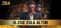 16250 Zula Altını