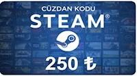 Steam Cüzdan Kodu 250 TL