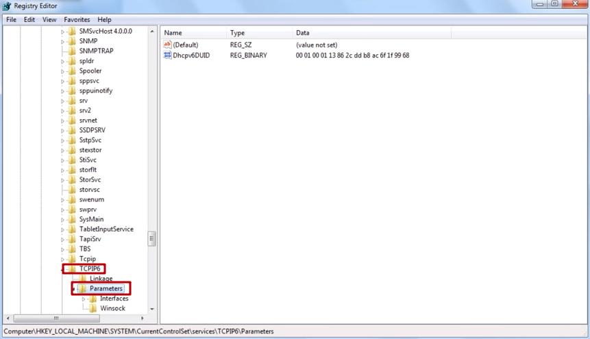 TCPIP6 \ Parameters seçin