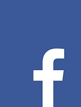 Facebook Oyun