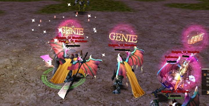 knight online genie